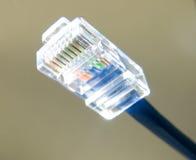 De Kabel van Ethernet royalty-vrije stock fotografie