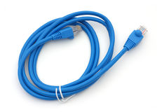 De kabel van Ethernet Royalty-vrije Stock Foto's