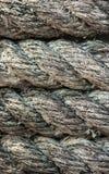 De kabel van het broodje Stock Foto