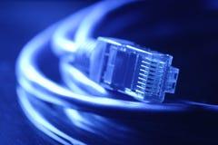 De kabel van het netwerk Royalty-vrije Stock Foto