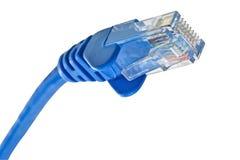 De kabel van het netwerk stock afbeeldingen