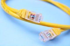 De kabel van het netwerk Stock Fotografie