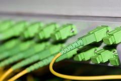 De kabel van het netwerk Royalty-vrije Stock Afbeeldingen