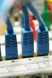 De kabel van het netwerk Royalty-vrije Stock Foto's