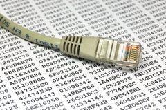 De kabel van het netwerk en encryptiesleutel Royalty-vrije Stock Fotografie