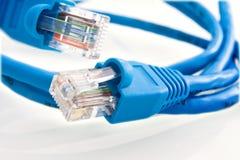 De kabel van het netwerk RJ45 Stock Foto's