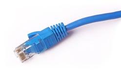De Kabel van het Netwerk van de computer Stock Afbeeldingen