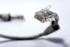 De kabel van Utp Royalty-vrije Stock Afbeeldingen