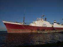 De kabeljauwschip van Aveiro stock foto's