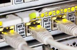 De kabels en de hub van het netwerk Stock Foto