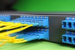 De kabels en de hub van het netwerk Stock Foto's