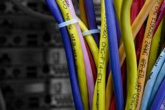 De kabels van de kleur in de rug van het serverrek Stock Foto