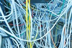 De kabels van Ethernet Royalty-vrije Stock Afbeeldingen