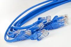De Kabels van Ethernet Stock Foto