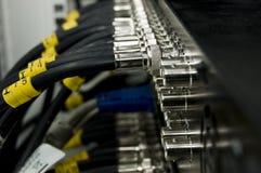 De kabels van het netwerk Stock Afbeeldingen