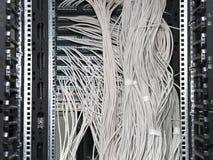 De kabels van het netwerk Royalty-vrije Stock Afbeelding