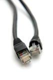 De Kabels van het netwerk Royalty-vrije Stock Afbeeldingen