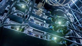 De kabels van het netwerk die met schakelaar worden verbonden Netwerkhub stock afbeelding