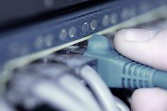De kabels van Internet stock afbeelding