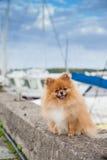 De kade van de Pomeranianverschansing op de achtergrond van jachten Royalty-vrije Stock Foto