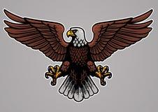 De kale adelaar spreidde zijn vleugels uit stock illustratie