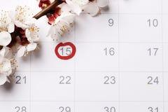 De kalender Planning van zwangerschap die baby proberen te hebben stock afbeeldingen