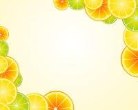 De kalk oranje frame van de citroen achtergrond Stock Foto's