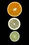 De kalk oranje plakken van de citroen Stock Foto