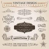 De kalligrafische Vector van het elementen uitstekende lint Royalty-vrije Stock Foto