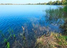 De kalme rushy kust van het de zomermeer Stock Foto's