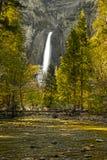 De Kalmte van Yosemitedalingen Stock Foto's