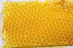 De kam van de honing royalty-vrije stock foto
