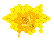 De kam van de honing Stock Afbeeldingen