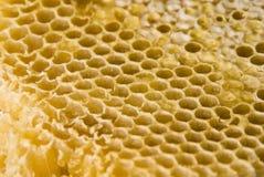De kam van de honing Stock Foto's