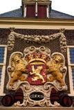 De kam van de leeuw Royalty-vrije Stock Fotografie
