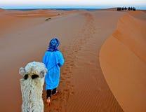 De kameel en zijn meester lopen door de Sahara in Marokko stock fotografie