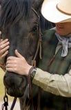 De Kameraden van de cowboy stock fotografie