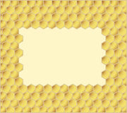 De kammen van de honing Royalty-vrije Stock Foto