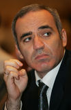 De kampioen Garry Kasparov van het schaak Royalty-vrije Stock Foto