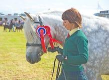 De kampioen in Nairn toont. royalty-vrije stock foto