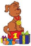 De kampioen van het puppy Stock Afbeeldingen