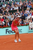De kampioen van Ivanovic van Ana van Roland Garros 2008 (83) royalty-vrije stock afbeelding