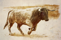 De kaneel die van de stierenkleur bij een stieregevecht galoppeert royalty-vrije stock afbeelding