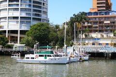 De Kant van de Rivier van de Stad van Brisbane Royalty-vrije Stock Fotografie
