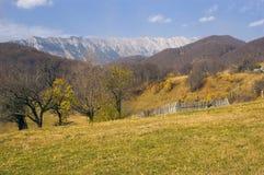 De kant van het land in de herfst stock afbeelding