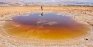 De kant van Jordanië van Dode Overzees royalty-vrije stock afbeelding