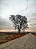 De kant van Missouri Royalty-vrije Stock Afbeelding
