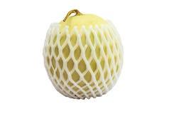 De kantaloep melonpacked met beschermend netto schuim isoleert witte bedelaars Stock Afbeeldingen