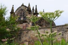 De Kapel van Rosslyn met Bloem Stock Foto's