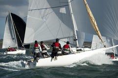 De kapitein van het team op jacht bij regatta stock foto